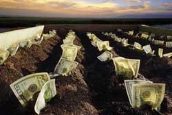 Уплата земельного налога в России