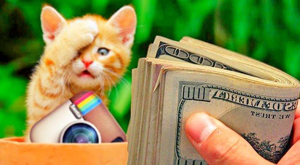 Как заработать деньги в Инстаграмм на рекламе: инструкция