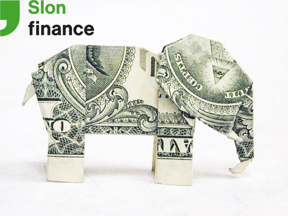 займ Слон Финанс